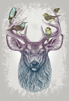 Poster | MAGIC BUCK von Rachel Caldwell | more posters at http://moreposter.de