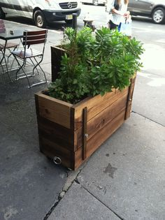 wheeling planter boxes-cool and mobile