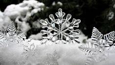 Jég, Csillag, Téli, Hó, A Reflexió A Fény, Biel, Bokeh