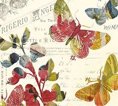 butterflies with text