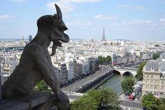 Vista desde la Catedral de Notre Dame.