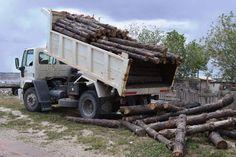 CORFO entregó madera a Fundación de Madryn para fortalecer proyecto educativo http://www.ambitosur.com.ar/corfo-entrego-madera-a-fundacion-de-madryn-para-fortalecer-proyecto-educativo/ Se trata de la fundación Ceferino Namuncurá, que trabaja con jóvenes en riesgo. La materia prima otorgada proviene del Vivero que el organismo provincial tiene en Corcovado.     El Gobierno Provincial, a través de CORFO, entregó postes de madera del aserradero de Corcovado a la fundació