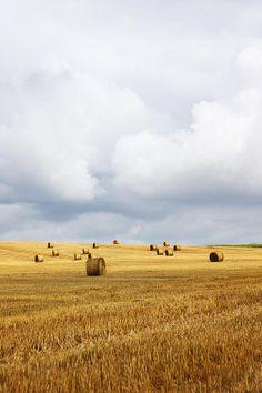Straw Bales In Field With Stormy Sky