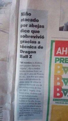 Niño atacado por abejas dice que sobrevivió gracias a técnica de Dragon Ball Z Si no lo ves, no te la crees.  (づ。◕‿‿◕。)づ https://profesoryeow.com/bla-bla-bla/nino-atacado-por-abejas-dice-que-sobrevivio-gracias-a-tecnica-de-dragon-ball-z/ #Avejas, #DragonBallZ, #Vegeta
