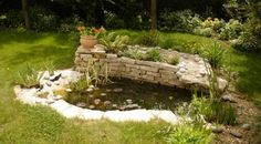 Bassin jardin 91