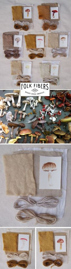 There is so much I love about Folk Fiber, but the fact that Maura hand dye's some of her fabric using natural resources is awesome! This series she did of dyes from mushrooms is gorgeous. I love everything about it, from the amazing illustrations, to the gorgeous neutral color palette that emerged from the process. …