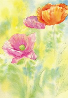 How to paint poppies in watercolor, step by step.
