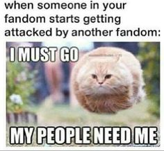 Supernatural vs. Beliebers (Me: Doctor Who, Supernatural, Sherlock, My Little Pony, Harry Potter, Pokémon, FNAF, Undertale, Percy Jackson, Disney, YouTube, Torchwood, Marvel, Star Wars, etc. ATTACK!!!!!)