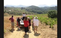 Touring a Priorat Vineyard