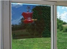 Songbird 2-Way Mirror Window Film