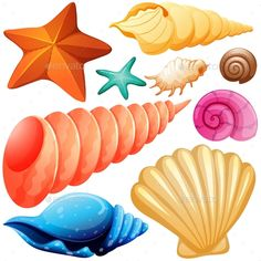Buy Different Types of Seashells by BlueRingMedia on GraphicRiver. Different types of seashells illustration Festa Moana Baby, Diy And Crafts, Crafts For Kids, Underwater Painting, Cartoon Fish, Moana Party, Mermaid Cakes, Mermaid Birthday, Pisces