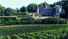 Bordeaux Wine Regions 25 Great Places to Visit in France The Places Youll Go, Great Places, Beautiful Places, Places To Visit, Chateau Bordeaux, Bordeaux 3, Bordeaux Wine Region, Rando Velo, Bordeaux Vineyards