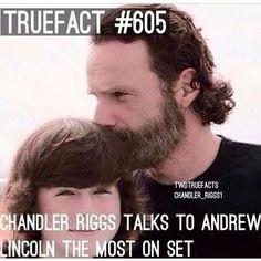 TWD Fact