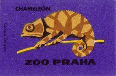 prague zoo. 1963. czechoslovakia. matchbox label. print. ephemera. [2955]