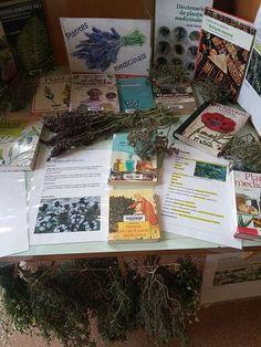 Del 2 al 15 de maig toca: Plantes medicinals Medical, Mini, Cover, Books, Art, Plant, Livros, Livres, Kunst