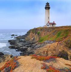 Pigeon Point Lighthouse, California. South of San Francisco, near Hwy 1. This coastline drive in CA is at the top of my list as one of the most beautiful places I've had the pleasure of experiences.