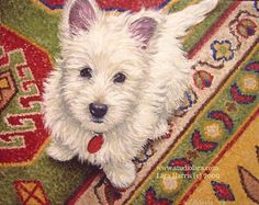 8x10 Westie West Highland Terrier Fine Art Giclee Print by LARA