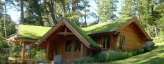 Cómo tener una casa más fresca en verano y más cálida en invierno | La Bioguía