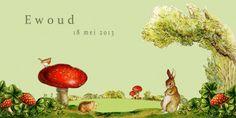 Geboortekaartje jongen - paddestoel konijn - Pimpelpluis https://www.facebook.com/pages/La-Zanzara-Designs/188675421305550