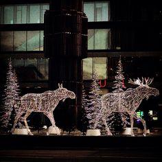 Christmas Moose. Stockholm Christmas 2014.