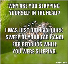 528c5a9c5fecc35ad3bb2e909d1e5c86 killing spiders the best of the \