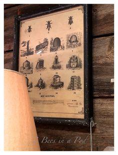 Antique Bee Keeping Print #farmhouse #decor