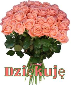 Designer Clothes, Shoes & Bags for Women Beautiful Bouquet Of Flowers, Beautiful Flower Arrangements, Beautiful Roses, Pink Flowers, Beautiful Flowers, Peach Bouquet, Montreal Botanical Garden, Special Flowers, Flower Photos