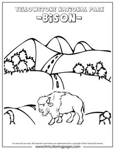 Bison At Yellowstone Park In Wyoming Coloring Page Visit Yellowstone, Yellowstone Camping, Yellowstone Vacation, Yellowstone National Park, National Parks, Road Trip Activities, Book Activities, Camping Dramatic Play, Voyage Usa