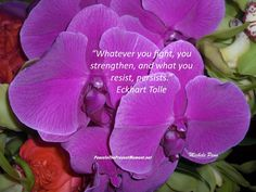 Whatever you fight, you strengthen, and what you resist, persists. ~ Eckhart Tolle