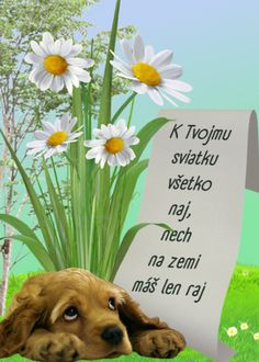 K Tvojmu sviatku všetko naj, nech na zemi máš len raj Avengers Birthday Cakes, Happy Birthday Quotes, Winnie The Pooh, Good Morning, Diy And Crafts, Humor, Disney Characters, Cards, Photos