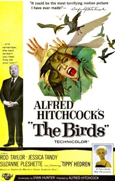 The Birds (1963), I swear after I watched this movie I look at flocks of birds very differently.