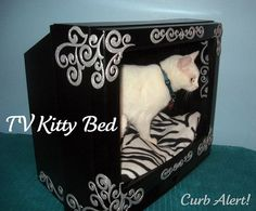 but i have a chiuaua. so it'll be a chiuaua bed instead :) TOO FLIPPIN CUTE! Animal Projects, Diy Projects, Animal Tv, Animal Care, Monitor, Sleeping Dogs, Pet Beds, Tv Dog Beds, Doggie Beds