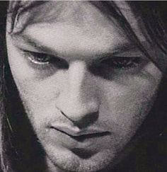 Beautiful David....those eyes!