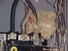 This is what was found inside a 200-amp electrical panel: a plastic shopping bag wrapped around the service-entrance cables. Are You Kidding Me!