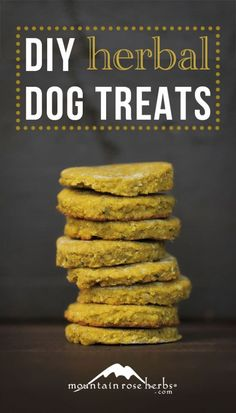 Like most processed foods, dog treats contain a lot of unhealthy ingredients. All the more reason to make your own with these 7 Drool-Worthy Homemade Dog Treat Recipes. Puppy Treats, Diy Dog Treats, Homemade Dog Treats, Dog Treat Recipes, Dog Food Recipes, Food Tips, Food Ideas, Food Dog, Puppy Food