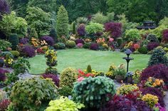 Mix of evergreens with perennials with a grass lawn space too. So colorful & lovely!