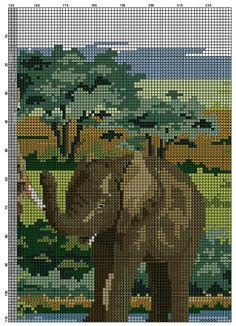 elefanten 6