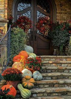 See how to create fabulous fall porch displays using pumpkins, mums, gourds, and fall farmhouse style accessories. Find unique ideas for fall porch decor. Fall Home Decor, Autumn Home, Autumn Fall, Fall Decor Outdoor, Country Fall Decor, Fall Mums, Country Living, Deco Champetre, Decoration Entree