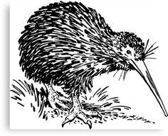 Free Image on Pixabay - Kiwi, Bird, New Zealand, Animal New Zealand Jobs, Cannabis, Free Svg, Kiwi Bird, Maori Art, Bird Silhouette, Christmas Pictures, Christmas Stuff, New Zealand