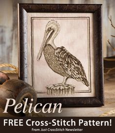 Pelican Download from Just CrossStitch newsletter. Click on the photo to access the free pattern. Sign up for the newsletter here: AnniesNewsletters.com