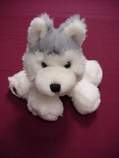 WEBKINZ HUSKY ~ PLUSH ONLY ~ NO CODE ~ FREE SHIPPING $7.00
