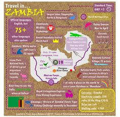 Travel in Zambia infographic - from T2Ts Travel In... series of infographics featuring travel tips and advice for travel in Africa