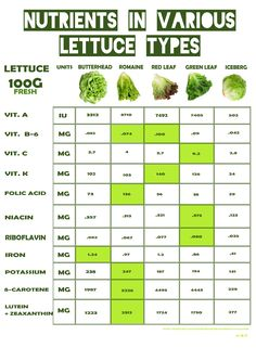 Health Benefits and Safe Handling of Salad Greens, Nutrients in various lettuce types, Iceberg	Green Leaf Red Leaf	Romaine	Butterhead