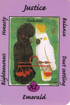 XI. Justice (Cockatoo) Australian Animal Tarot Deck.  Balancing out and weighing up/honesty. Righteousness. (LIBRA)