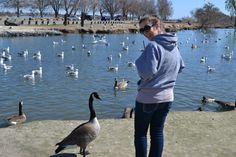 Meghan w/ Ducks