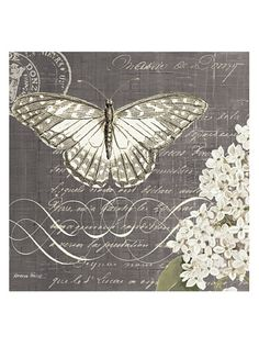 "Kathryn White Butterfly Blossom No. 2 Hand-Embellished Canvas, 20"" x 20"" at MYHABIT"