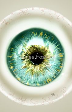 Iris by James Fosdike