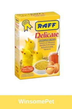 RAFF Delicate Allevamento is a food suitable for all grain eating species during the reproductive period. Bird Food, A Food, Period, Grains, Egg, Honey, Delicate, Eggs, Bird Feeder