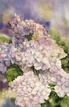 Watercolor flowers hydrangeas white lavender leaves