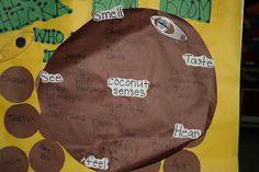 Bring in coconut, make 5 senses chart. Beginning lesson on observation